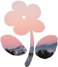 Decouper Une Image Selon Un Gabarit En Forme De Fleur Emporte Piece